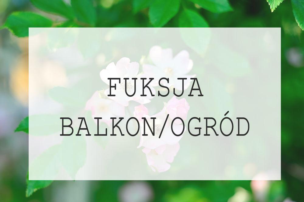 Fuksja na balkon i do ogrodu – odmiany, sadzenie, uprawa, podlewanie