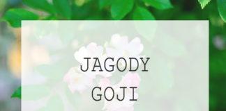 Jagody goji - uprawa w domu - sprawdzone sposoby