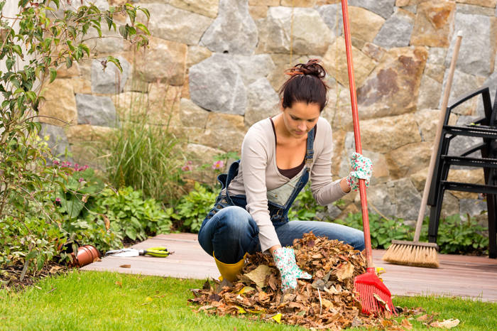 Nadchodzi jesień. Jakie prace ogrodowe wykonać we wrześniu?