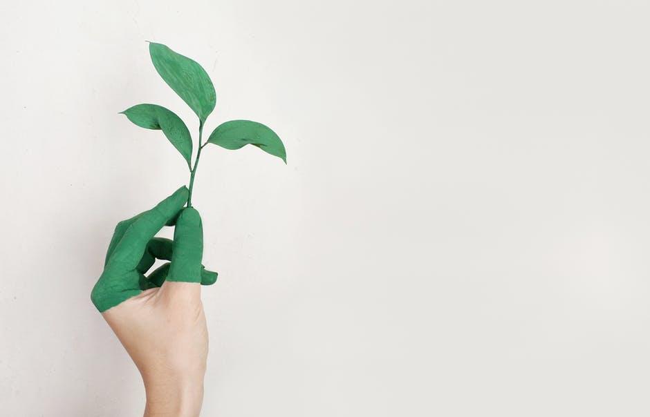 Domowy recykling – jak na stałe wprowadzić go do swojej codzienności